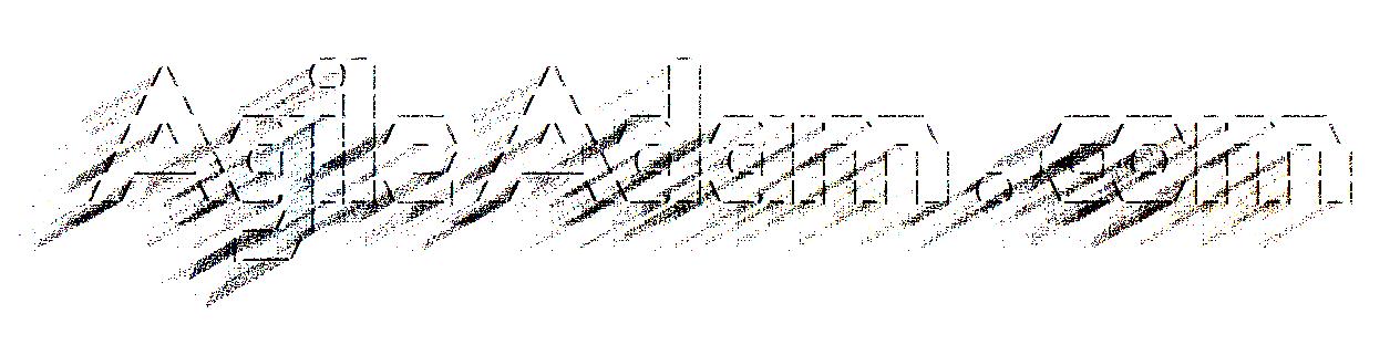 AgileAdam.com
